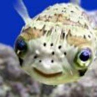 crapfisher