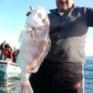 Ahmet Tahir