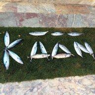 Kaan92