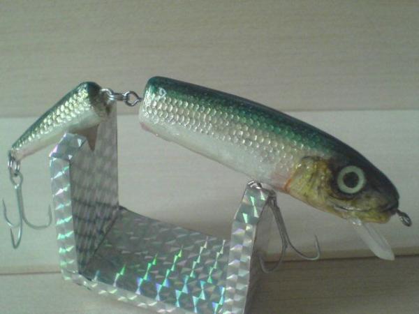 parçalı gerçek balık kafalı