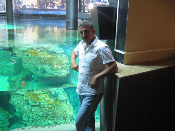 akvaryum balık (25)