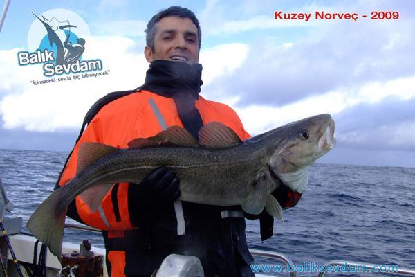 Norveç 2009