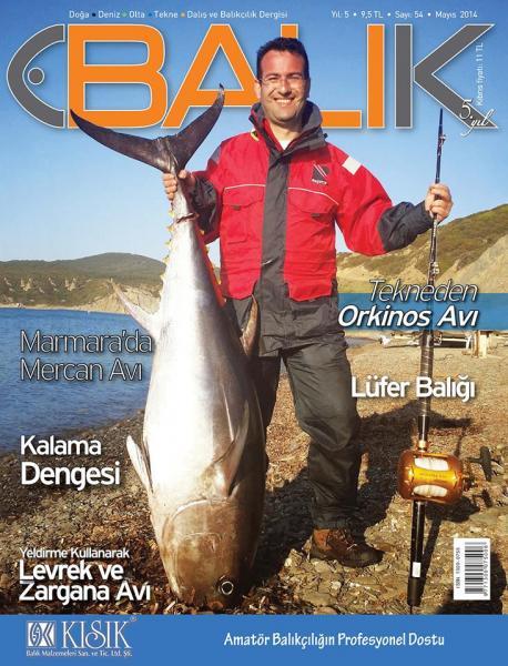 Orkinos (Bluefin)