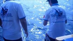 Balık Sevdam Adrasan Organizasyonu 9-12 Mayıs 2013