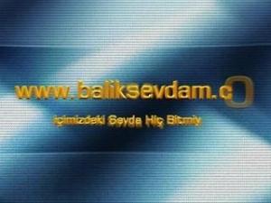 www.baliksevdam.com Amatör ve Sportif Balık Avı Sitesi