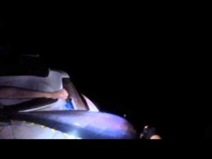 suat yiğit gece orkinos avı 140kg