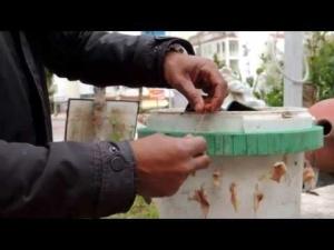Balık Matik Yem takma tekniği...